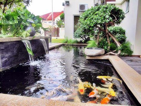 61 referensi desain gambar kolam ikan minimalis terbaik