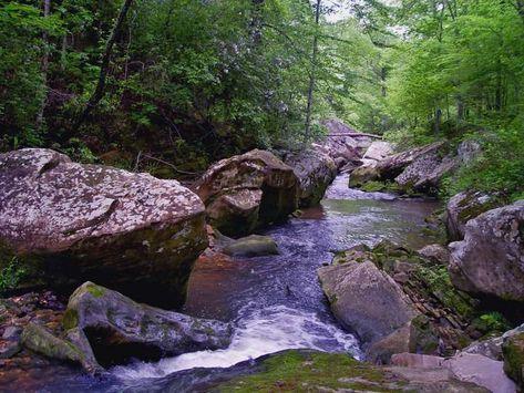 Cane Creek Canyon Nature Preserve - Alabama Recreation Trails