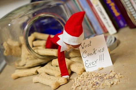 Elf on the Shelf : Worst Cookies EVER!!! THIS TOTALLY CRACKS ME UP