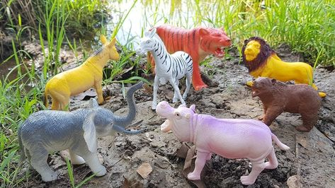 Image of: Schleich Learn Wild Animals Names With Animal Toys And Real Animal Videos For Kids Pinterest Learn Wild Animals Names With Animal Toys And Real Animal Videos For