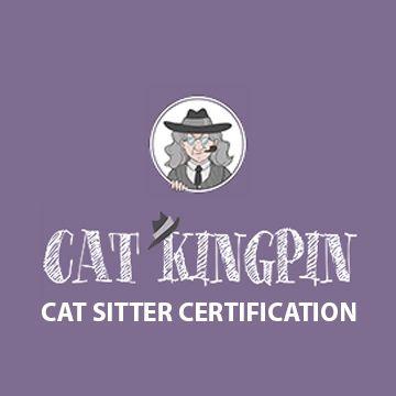 Cat Sitter Certification Box For Popup Cat Sitter Forest Cat Norwegian Forest Cat Breeders