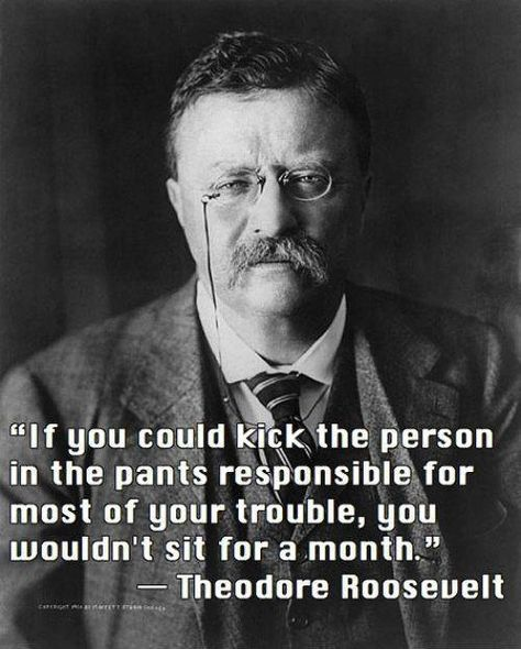Top quotes by Theodore Roosevelt-https://s-media-cache-ak0.pinimg.com/474x/c8/3e/20/c83e2065bd3808a2b00dc24b900462bc.jpg