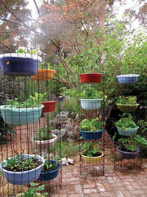 Guide to Urban Homesteading | MOTHER EARTH NEWS
