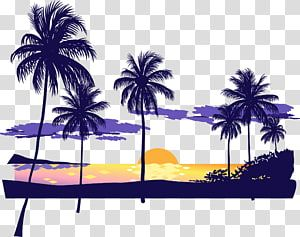 Coconut Tree Illustrations Sunset Beach Icon Beach Sunset Dusk Transparent Background Png Clipart Tree Illustration Beach Icon Beach Illustration