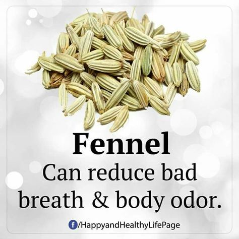 Fennel for bad breath and body odor | Info | Pinterest