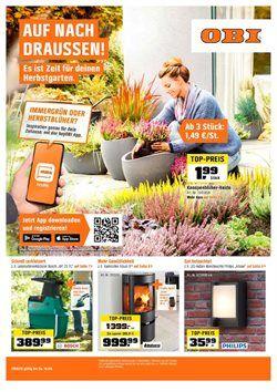 Obi Gartenmobel Angebote In 2021 Obi Farbabstimmung Haus Und Garten
