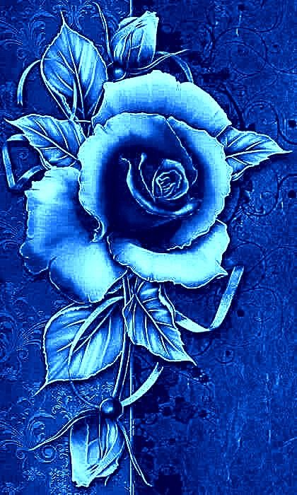 Pin By Joy Withers On Backgrounds Borders Wallpaper Purple Flowers Wallpaper Rose Flower Wallpaper Flower Phone Wallpaper Blue rose wallpaper for phone