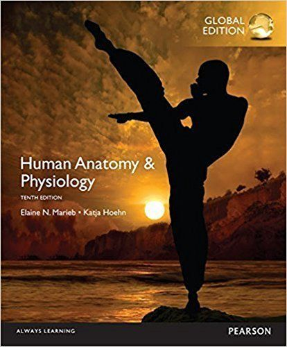 Human Anatomy And Physiology Global 10th Edition ISBN 10