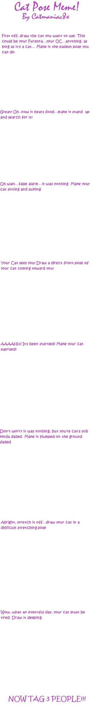 Cat Pose Meme Blank By Catmaniac8x Memes Art Memes Cat Pose