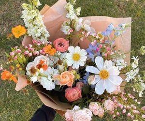 Pastel Flowers, Simple Flowers, My Flower, Vintage Flowers, Beautiful Flowers, Heart Flower, Happy Flowers, Plants Are Friends, Flower Aesthetic