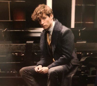 Pin By Amanda On Fantastic Beasts And Harry Potter Eddie Redmayne Fantastic Beasts Fantastic Beasts Cast Harry Potter Fantastic Beasts