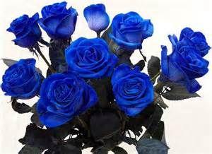 Mazzo Di Fiori Blu.Mazzo Di Rose Fiori Mazzo Di Rose Fiori Rari