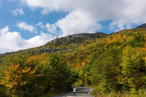 October 11, 2013 - Fall color is bright and beautiful on the flanks of Grandfather right now.  This image was taken from US 221 looking up at the Linn Cove Viaduct.  (Photo by Skip Sickler)