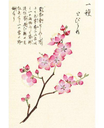East Urban Home Honzo Zufu Cherry Blossum Art Print On Paper In 2021 Cherry Blossom Art Blossoms Art Japanese Art