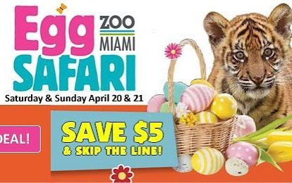 Don T Miss 2019 Egg Safari At Zoo Miami On Saturday And Sunday April 20 21 From 10am 4pm Save 5 00 And Skip The Lin Buy Tickets Online Zoo Animals Miami