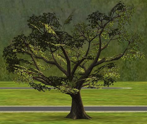 Moar Stuff For About The Sims Neighborhood Trees The Neighbourhood Sims Sims Mods