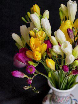 Buque De Flores Fotos Baixe Imagens Gratis Pixabay Com