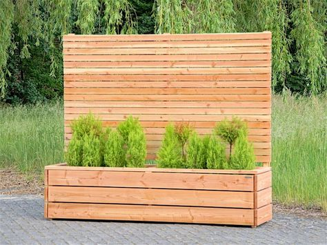 Sichtschutz mit Pflanzkübel \/ Blumenkasten Holz, Natur Geölt - sichtschutz holz modern