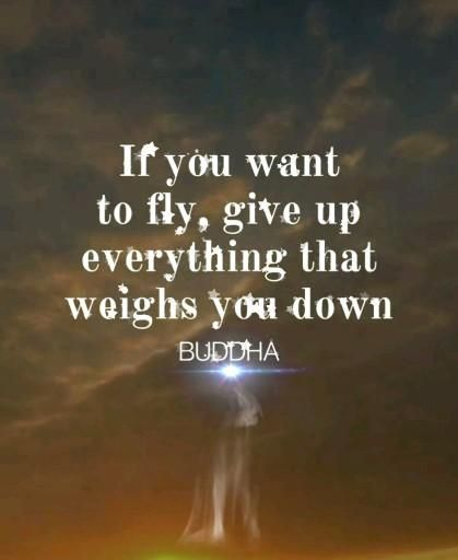 If you want to fly learn on how to give up the things that weighs you in life. #quotes #inspire