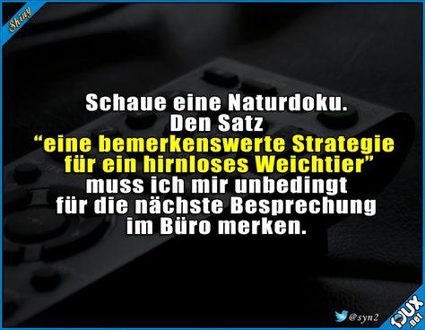 Den Satz kann ich bestimmt öfter gebrauchen #Weichtier #hirnlos #nurSpaß #schwarzerHumor #lustiges