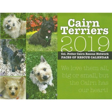 2019 Col Potter Cairn Rescue Network Faces Of Rescue Calendar