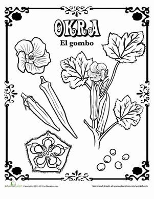Edible Plant Coloring Pages Designs Collections