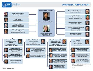 Interactive Organizational Chart  Diagramming