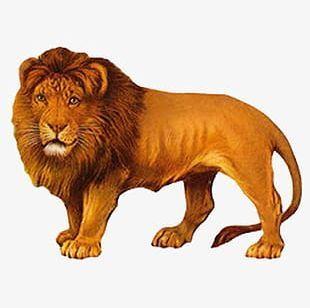 Lion Png Images Lion Clipart Free Download Victorian Scrap Clip Art Vintage Lion Drawing