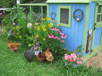 I Love How Chicken Coops Are Incorporated Into Lush Gardens As - Chicken co op with flowers