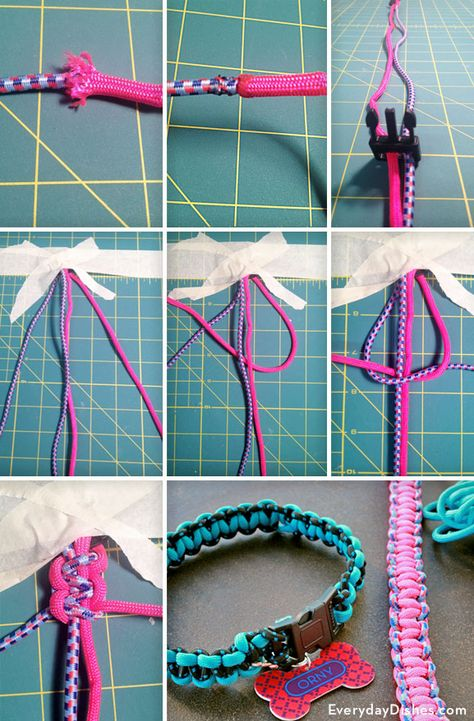 Dogs DIY braided dog collar video instructions - Create a braided dog collar using paracord for durability. We'll show you how to weave a durable collar in any size for your stylish furry friend. Diy Dog Collar, Collar And Leash, Dog Collars, Diy Dog Toys, Pet Toys, Homemade Dog Toys, Diy Tresses, Diy Collier, Diy Braids