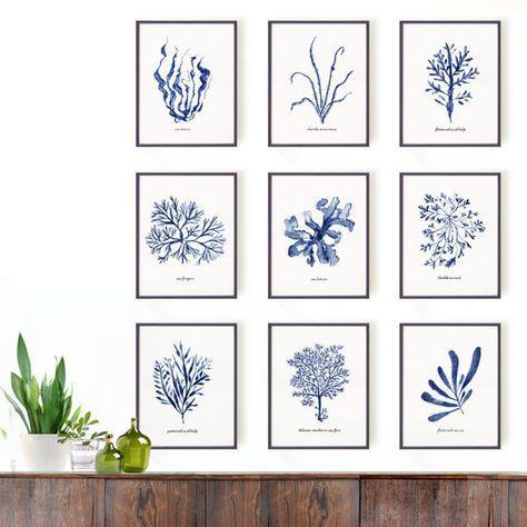 Navy Blue Seaweed Print Set Of 9 Hampton Style Art Bathroom Etsy In 2020 Coral Wall Art Bathroom Wall Art White Wall Decor