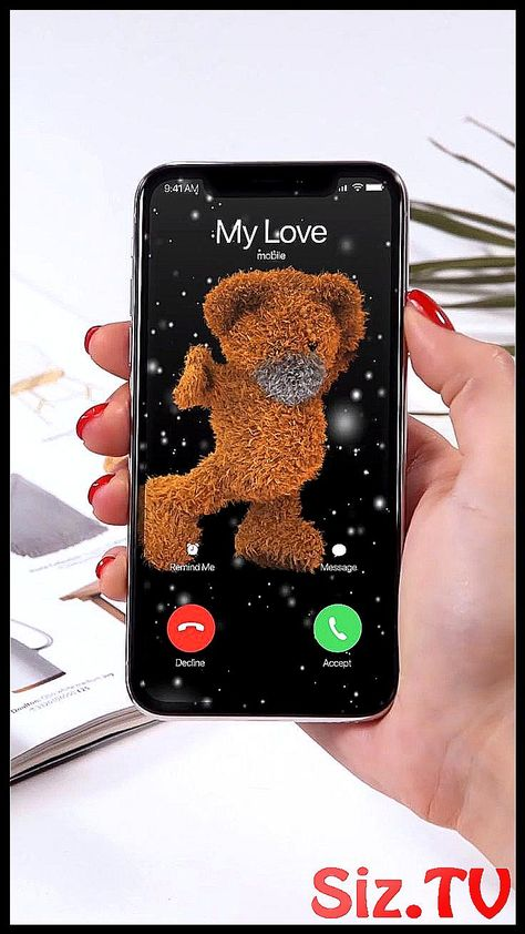 Bear 3D Best Ringtones  038  Wallpapers for your i #Bear3D #iphone #mobile_diy_videos #Ringtones #WALLPAPERS