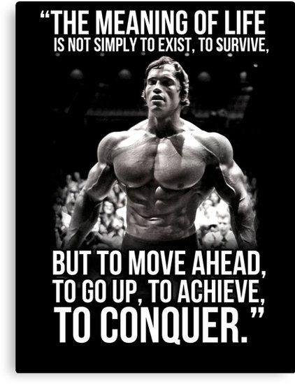 65 Famous And Inspiring Arnold Schwarzenegger Quotes Conquer Quotes Arnold Schwarzenegger Quotes Fitness Motivation Quotes
