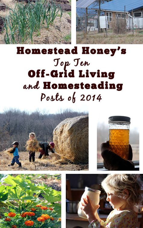 The top Homesteading and Off-Grid Living posts of 2014 | Homestead Honey