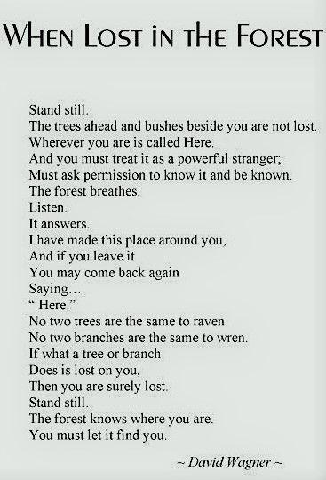 Hiking Poems 5