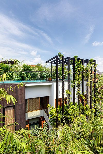 Amazing garden villa with stunning rooftop pool in Singapore by Aamer Architects