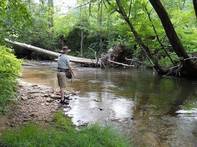 Unique Trout Fishing Locations 2486 Troutfishinglocations Fly