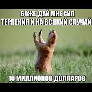 Rzhachnye Kartinki So Smyslom I Bez Shutki Citaty Minonov Smeshnye Shutki