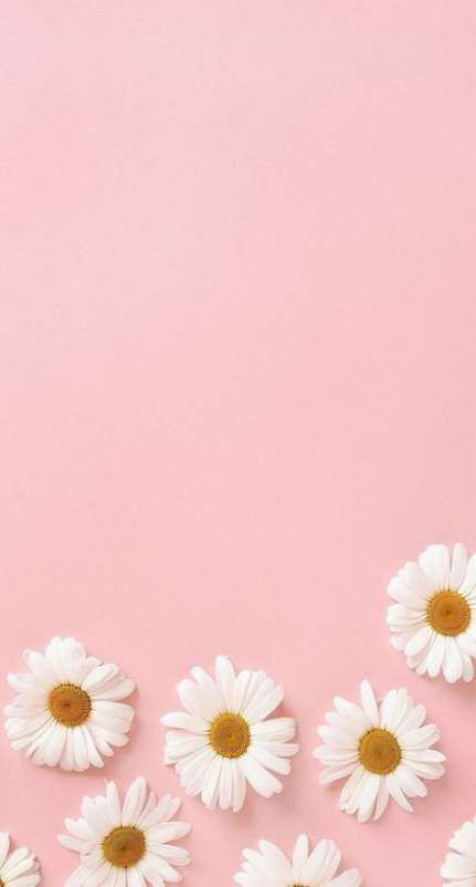 Wall Paper Flowers Phone Pink 16 Trendy Ideas Flowers Wall