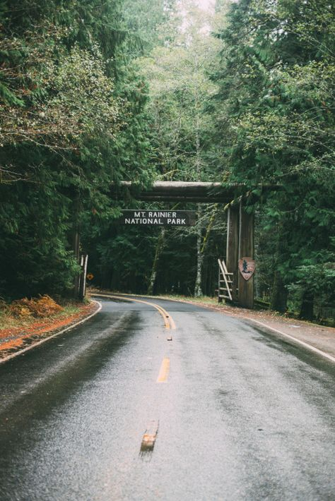 Mount Rainier National Park: I'll see you in June Into The Wild, Columbia River Gorge, Yasmine Galenorn, Oh The Places You'll Go, Places To Visit, Mt Rainier National Park, Nature Sauvage, Roadtrip, Adventure Is Out There