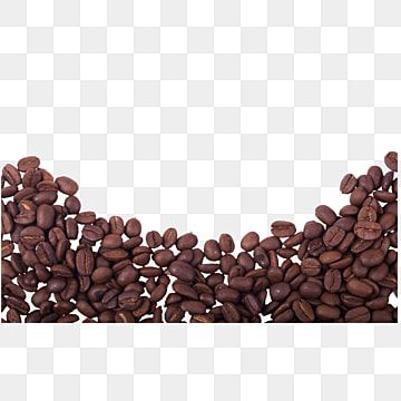 Some Good Quality Coffee Beans Coffee Beans Coffee Beverages Png Transparent Clipart Image And Psd File For Free Download Coffee Beans Coffee Cup Art Creative Coffee