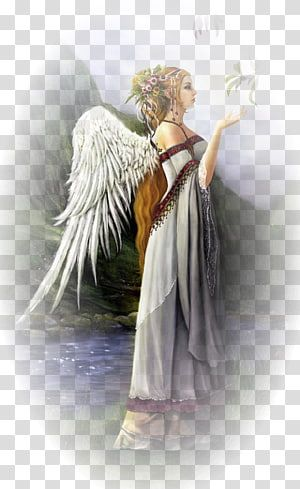Fairy Gabriel Michael Guardian Angel Fairy Transparent Background Png Clipart Angel Illustration Angel Wings Graphic Clip Art
