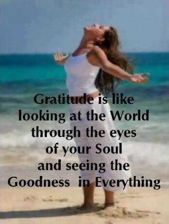c9743a3194d14f423f7b7b0c8ae5ee6e--spiritual-sayings-attitude-of-gratitude.jpg