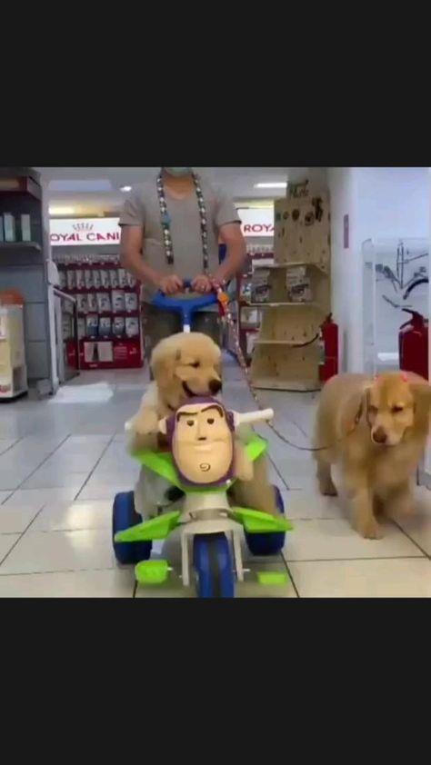 Enjoy the shopping ����