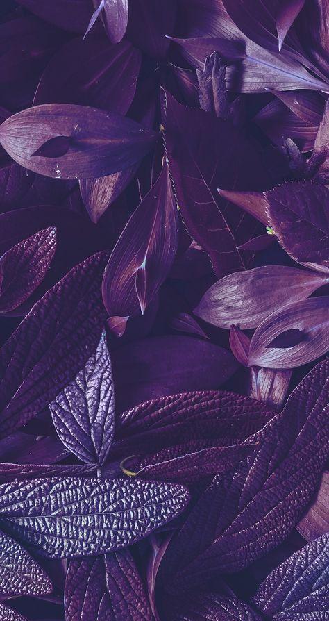 46 Ideas Home Screen Wallpapers Aesthetic Purple Screen Wallpaper Cute Wallpaper Backgrounds Purple Wallpaper