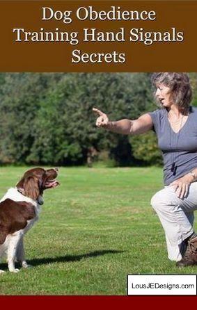 Dog Training 101 How To Train Your Dog Dog Training Plus Dog