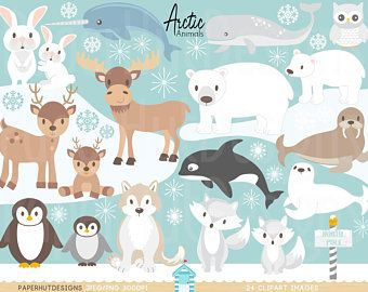 35+ Animal Playing In The Snow Clipart