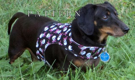 Small Dog Pattern Harness Vest Leash Instructions By Warmweenies