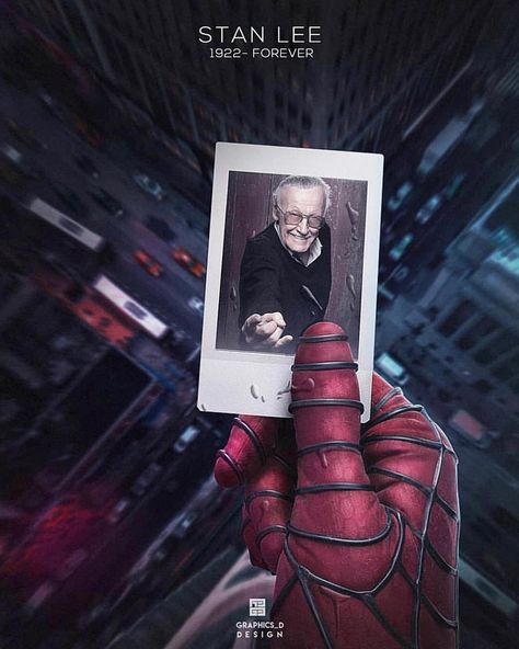 With Great Power LW-Canvas Poster 14x21 24x36 F-09 The Stan Lee Story