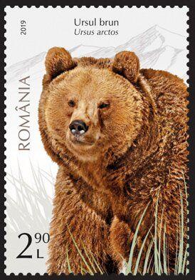 Bears On Stamps Minus Polar Bears Stamp Community Forum Page 5 Ursus Stamp Bear